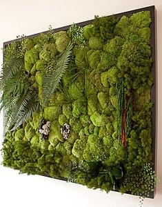 Green Wall Kit