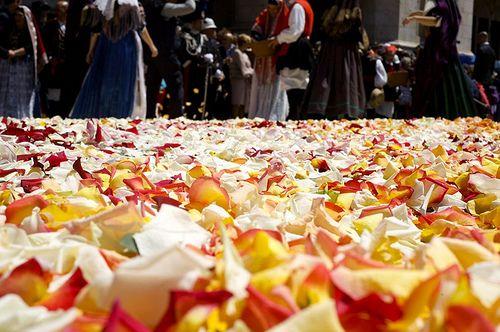 0744 - Sant'Efisio tra fede e tradizione.