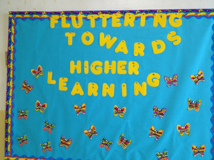 Classroom Decorating Themes Ideas ~ Back to school butterfly bulletin board
