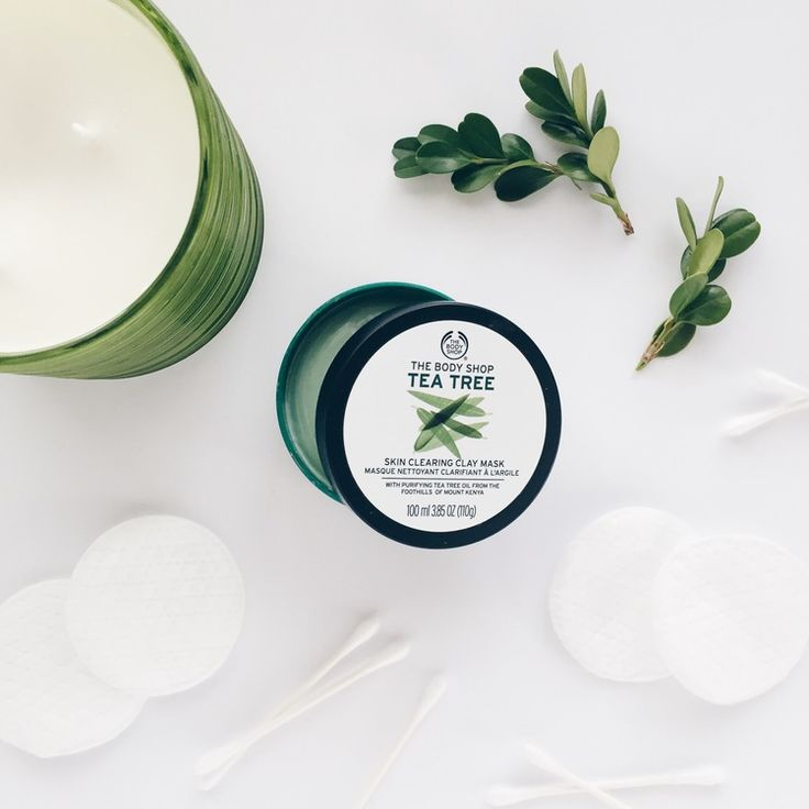 The Body Shop Tea Tree Skin Clearing Clay Mask // March 2016 Favorites — FOR ALL THINGS PRETTY