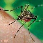 Per� declara emergencia sanitaria por riesgo elevado de chikungunya