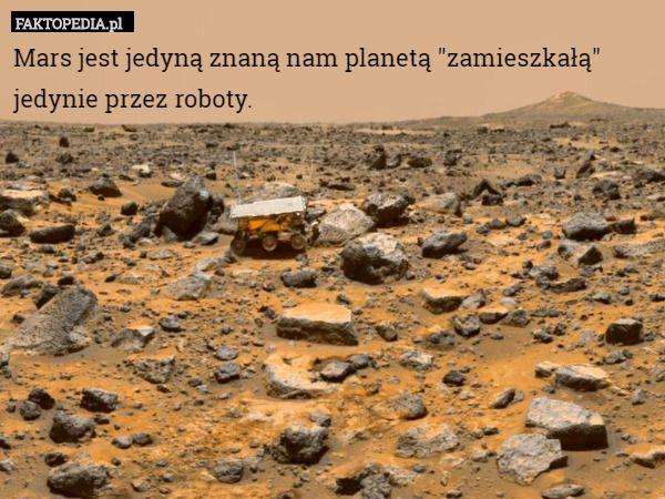 """Mars jest jedyną znaną nam planetą """"zamieszkałą"""" jedynie przez"""