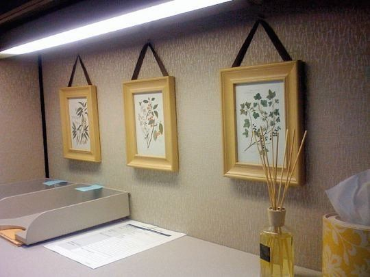 Placing art in a frame instantly elevates a cubicle's decor. Grab a set of three or five from a big store like Ikea or Target, and fill with photos or postcards on a similar theme.