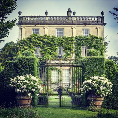 'Are you a graduate of English Literature? They're the only people I have time for.' (Prince Charles to Charles Clover, author of 'Highgrove: Portrait of an Estate') ⭐ This garden is top of my list to visit, apart from obvs, the stupendous garden of @david_paint which is OPEN TODAY! Do take a peek at his fab gallery. ⭐ Just about to book the Champagne Garden Tea Tour at Highgrove, unless of course Charles and Camilla would like to invite me round themselves for a private visit @clarencehouse…
