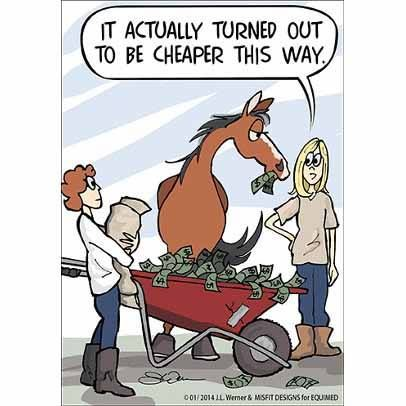 "Horse Truths comic ~ ""It actually turned out to be cheaper this way."""