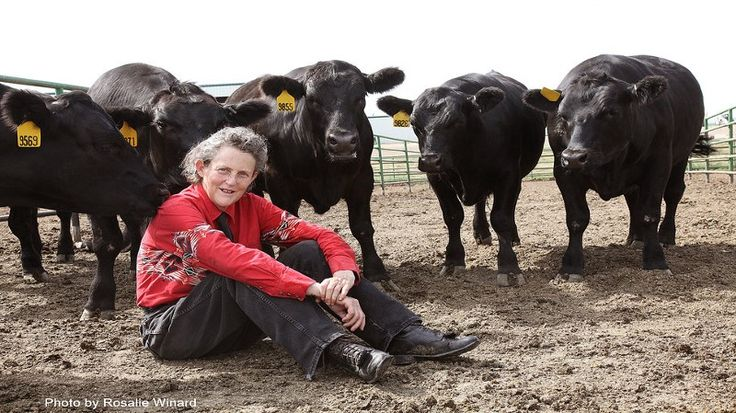 Temple Grandin didn't speak until she was 3-and-a-half years old. She was diagnosed with autism in the 1950s, an era with far less understanding of the autism spectrum. In spite of any antiquated…