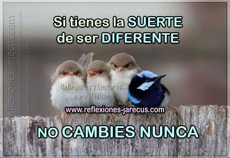 Si tienes la suerte de ser diferente no cambies nunca - Como atraer la suerte a mi vida ...