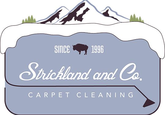 Strickland And Co Carpet Cleaning About Us How To Clean Carpet Carpet Cleaning Machines Cleaning