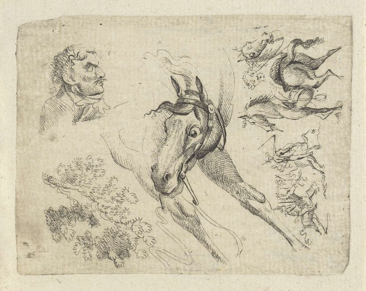 Johan Bernard Scheffer | Studieblad met paarden, een man en een tak, Johan Bernard Scheffer, 1788 - 1809 | Studieblad met linksboven een man en profil. In het midden een galopperend paard. Rechtsboven enkele paarden. Linksonder een boomtak en rechtsonder enkele ruiters te paard.