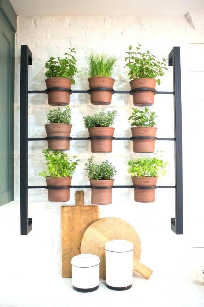 Hanging Herb Garden Indoor Full Image For Indoor Wall Mounted Herb