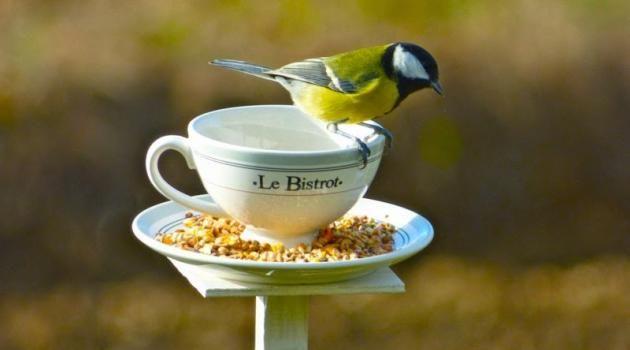 15 belles idées récup et recyclage pour le jardin ! - par nafeuse