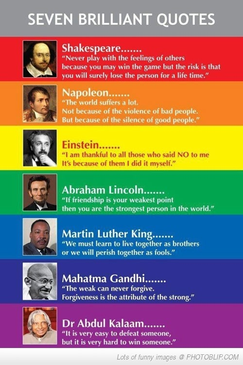 7 Brilliant Quotes ~~ wise words