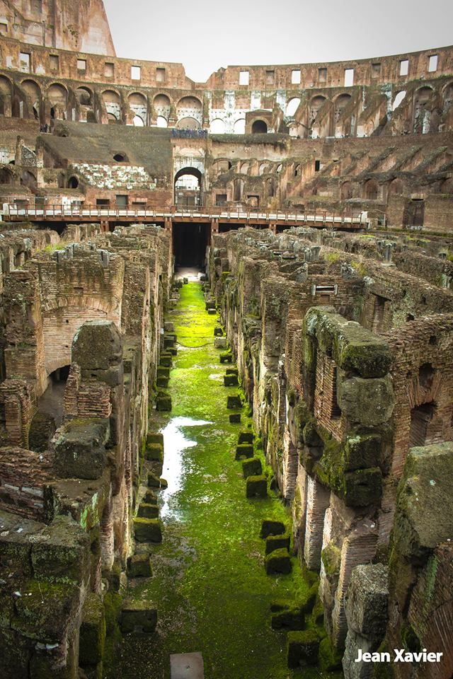 #Colosseum #Rome #Italy