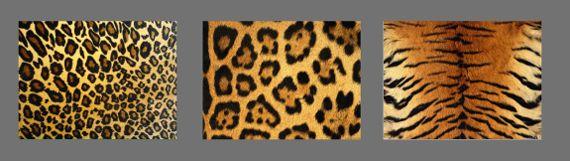 Леопардовый рисунок Классическое леопардовое платье в мелкую, продолговатую, темно коричневую пятнышку на светло коричневом фоне. Пятнышки организованы вертикально, к тому же прослеживаются более светлые и более темные вертикальные полосы на фоне. Чаще всего контраст между пятнами и фоном не большой.  Можно сказать с уверенностью: леопардовая расцветка платья стройнит.