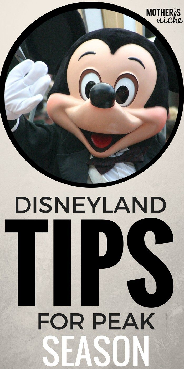 How to get the most out of Disneyland During Peak Seasons (Plus a crowd calendar for when to go)