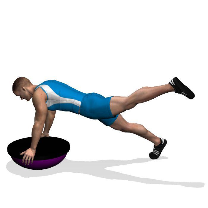 GLUTE KICKBACK STRAIGHT LEG ON BOSU INVOLVED MUSCLES ...