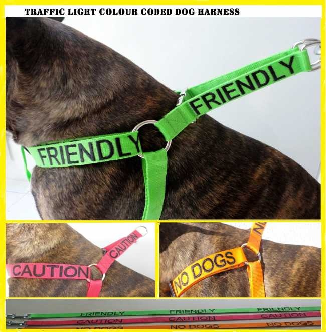 Traffic Light Color Coded Dog Harnesses It S A Dogs Life