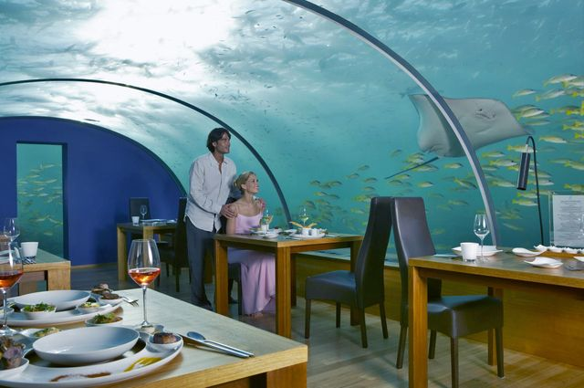Dining with the fishies and the sea creatures at The Ithaa Undersea Restaurant