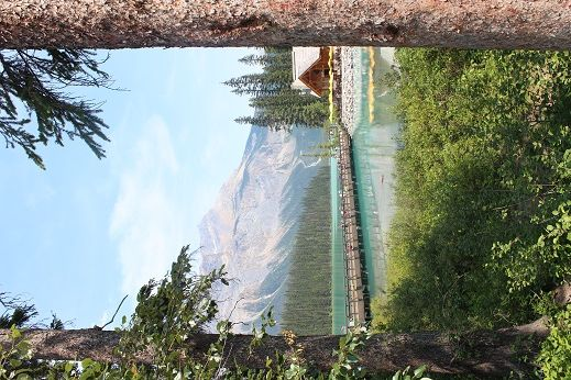 As we approach Emerald Lake, a picture between the trees of the bridge to the lodge and the lake