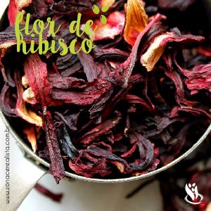 O chá feito com a flor de hibisco é uma bebida saborosa de cor avermelhada que possuí diversos benefícios a saúde. Acesse e confira suas qualidades.