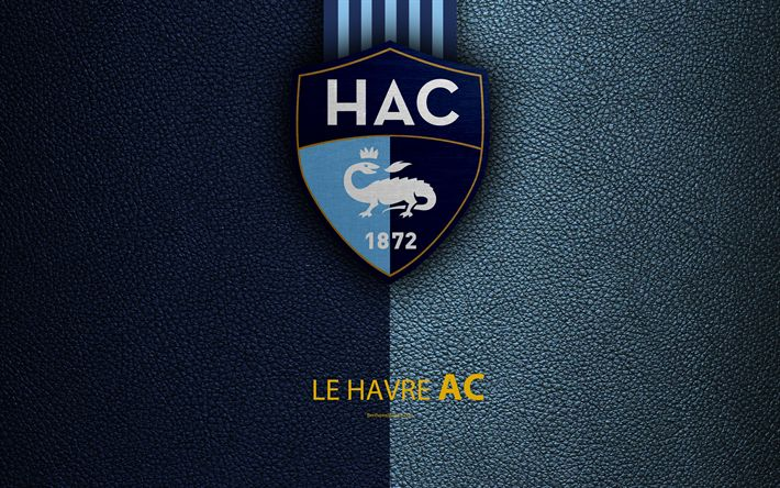Download wallpapers Le Havre AC, French football club, 4k, Ligue 2, Le Havre FC, leather texture, logo, Le Havre, France, second division, football