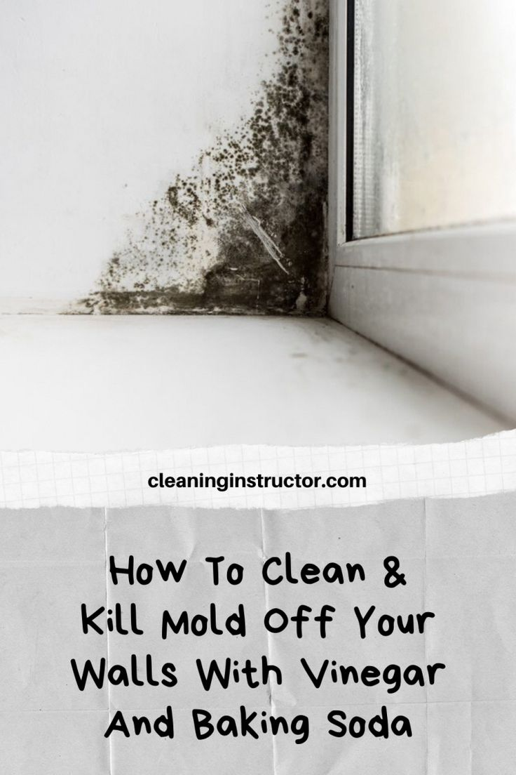 How To Clean & Kill Mold Off Your Walls With Vinegar And