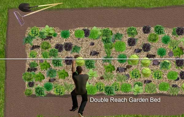 Here S A Way To Build A Vegetable Garden Directly On Grass Or Lawn Without Digging Permaculture