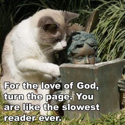 """""CATS ALLWAYS KNOW BEST """""