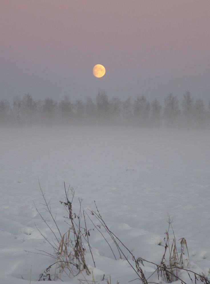 Good night in misty moonlight! by evasojahannele