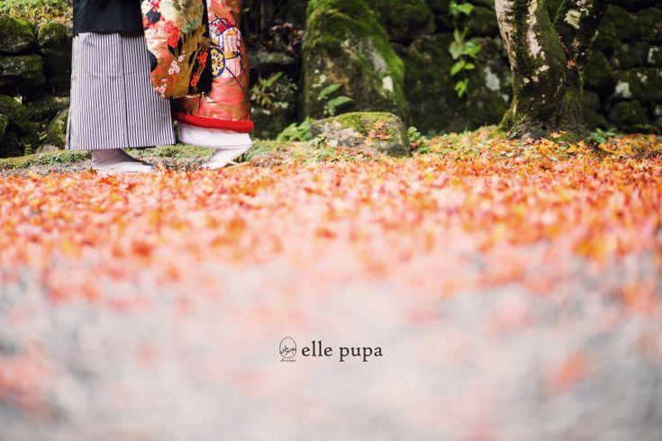 落ち葉とともに*和装前撮り |*ウェディングフォト elle pupa blog*