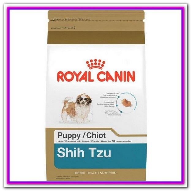 Best Weight Management Dog Food For Dachshunds Dog Food Recipes Royal Canin Dog Food Dry Dog Food