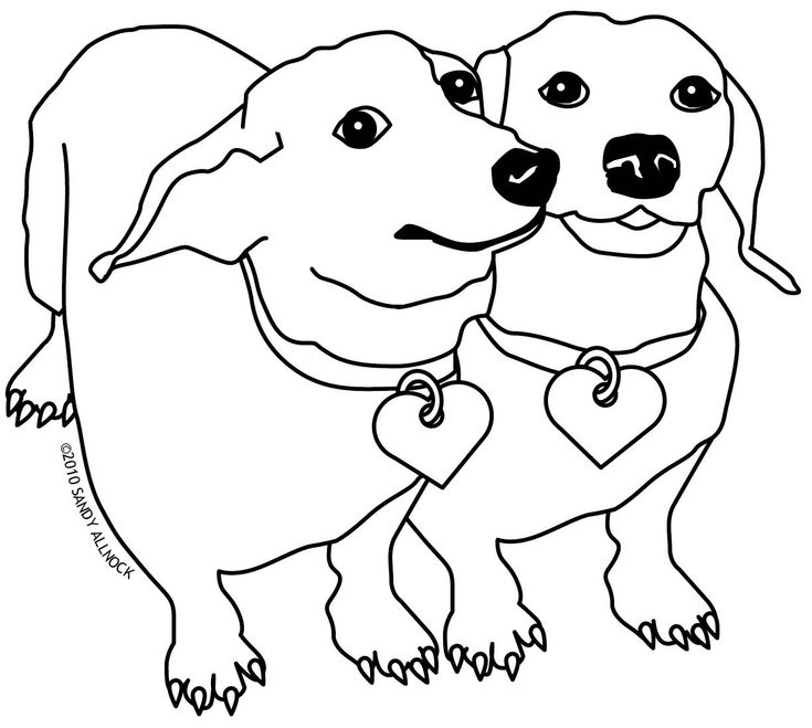 weenie dogs coloring pages - photo#2