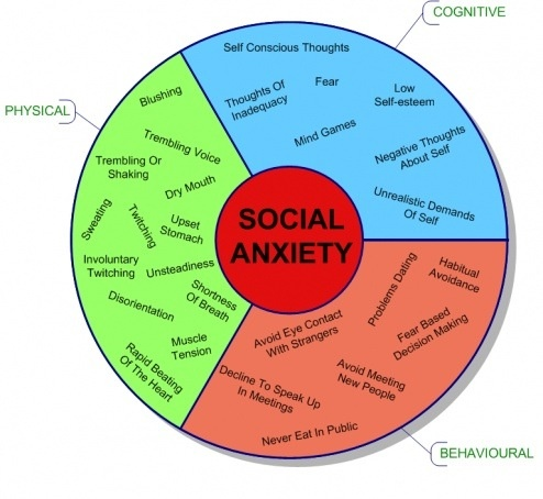 social anxiety and people essay Social anxiety disorder research short essay social anxiety disorder is also known as social phobia it is defined as the fear of social situations that involve interaction with other people.