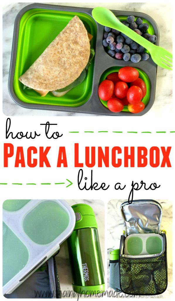 Learn how to pack a school lunchbox like a pro with these great tips & tricks. I love the My Plate diagram to know exactly what to pack for a healthy lunchbox. Plus the best lunchbox, thermos and lunch bag for school lunches. + FREE Lunchbox Printables!