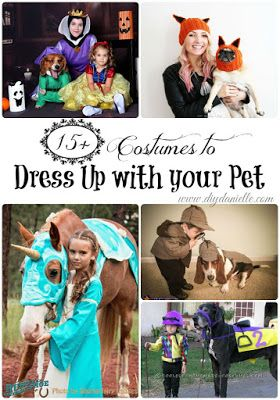 15  Halloween Costumes to Dress up with Your Pet