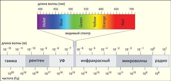 Спектр электромагнитный волн. Видимый свет занимает в нем узкую полоску длин…
