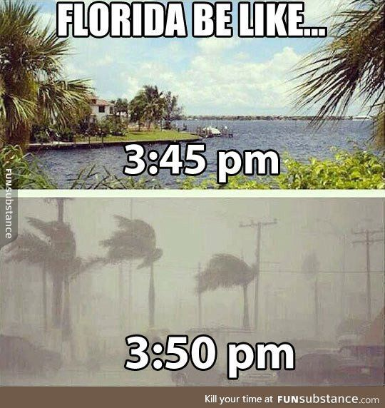Weather in florida