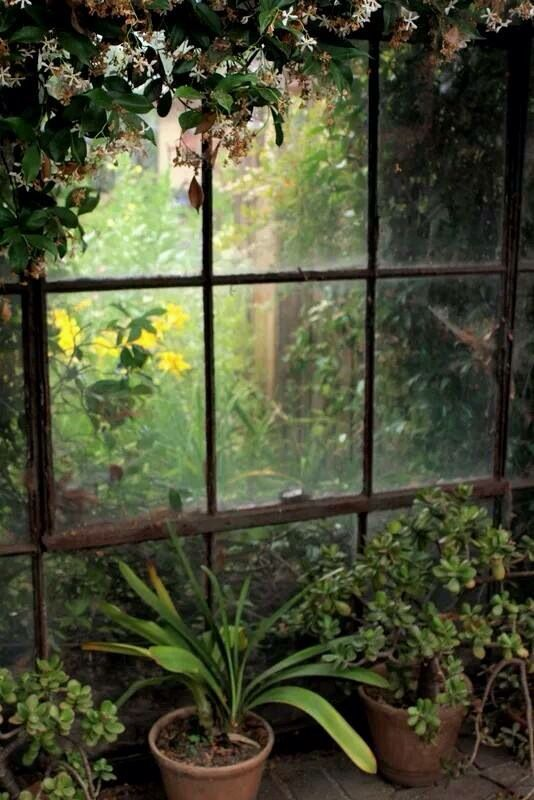 By Joanna Art-Land fb I think having a window in the garden would be a beautiful divider