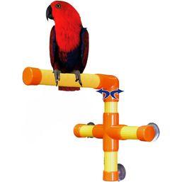 Zoo-Max Shower & Window Parrot Perch - Medium