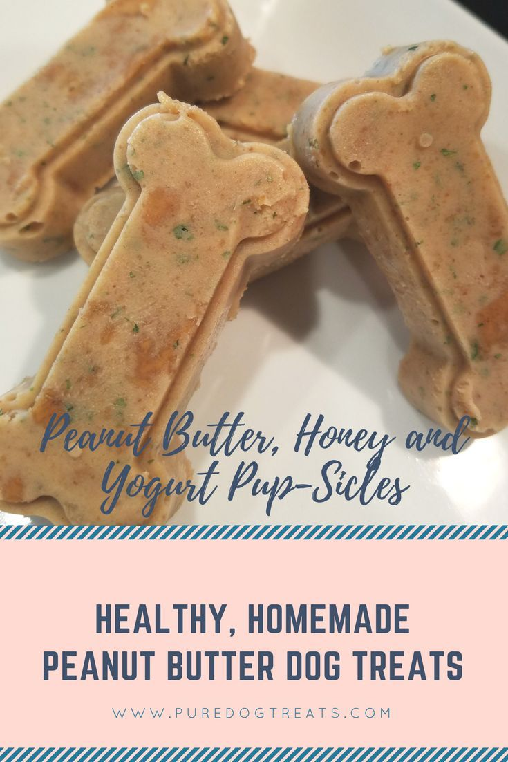 Omg The Best Inexpensive Peanut Butter Dog Treats Ever Peanut