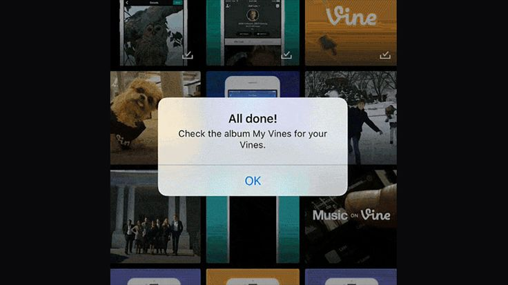 Addio Vine: scarica tutti i tuoi video prima che la piattaforma chiuda per sempre http://www.sapereweb.it/addio-vine-scarica-tutti-i-tuoi-video-prima-che-la-piattaforma-chiuda-per-sempre/        Vine Un giorno, non uno di più, per Vine come l'avete conosciuta. Chi deve scaricare i video lo faccia ora, perché da domani (17 gennaio) l'app di Twitter diventerà Vine Camera e le clip dell'archivio potranno solo essere consultate dall'interfaccia web. Vine, fondata nel