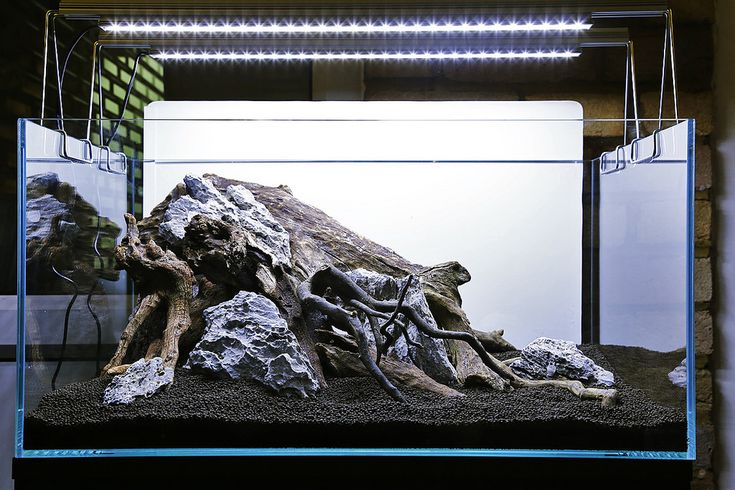 Hardscape by George Farmer.  UK.   Pin by Aqua Poolkoh