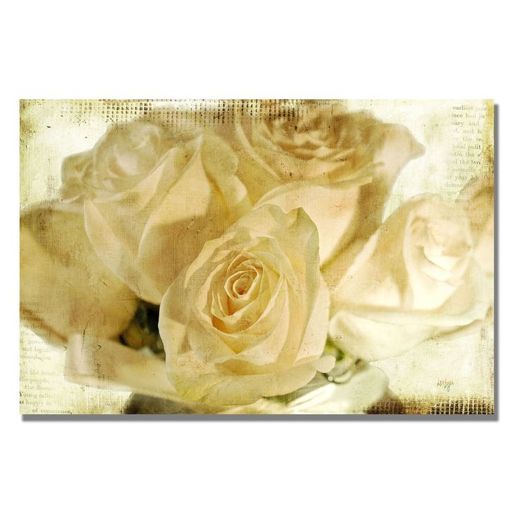 Lois Bryan 'White Rose's' Canvas Art - Overstock™ Shopping - Top Rated Trademark Fine Art Canvas