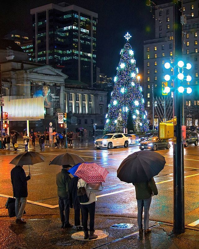 A Wet Christmas It S Beginning To Look A Lot Like We Re Not Having A White Christmas At Least This Year Vancouver Vancouver Art Gallery Tall Christmas Trees