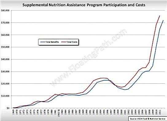 Best 25+ Supplemental nutrition assistance program ideas ...
