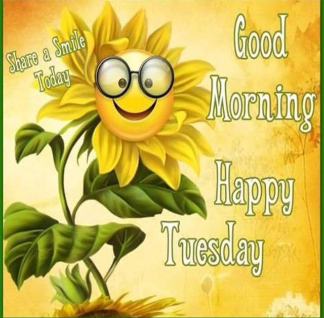 Good Morning Everyone Happy Tuesday : Happy tuesday to everyone days of the week