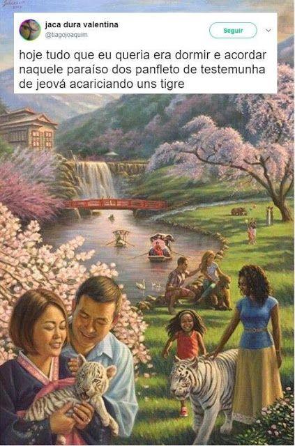 Entidades Ciganas da Umbanda (Clique Aqui) para entrar.: Humor cigano- Testemunhas de jeová