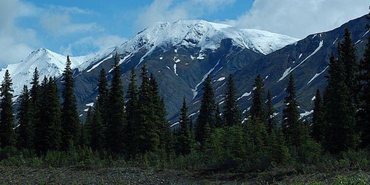 Alaska Range from Parks Highway 2012-06-13 (12) | Flickr - Photo Sharing!