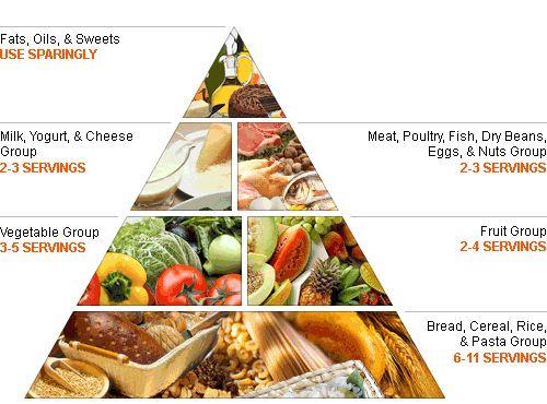 Best Program To Find Calories In Australian Foods
