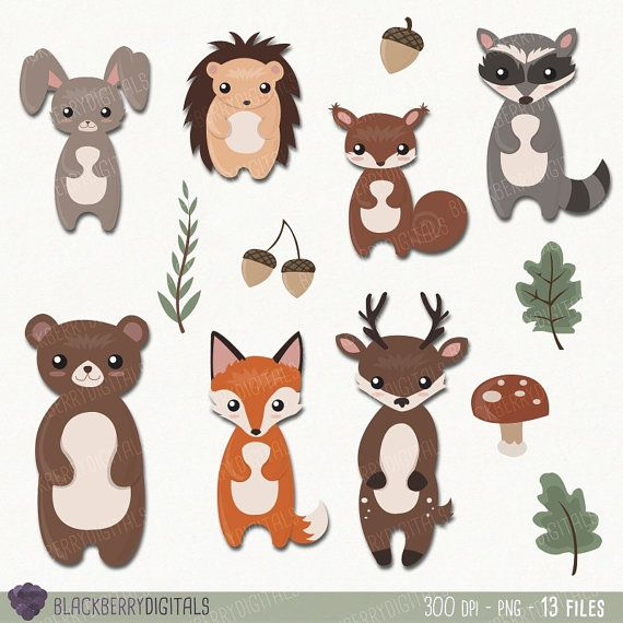 Woodland Animals Clipart Set woodland by BlackberryDigitals